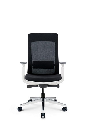 Elevate Chair